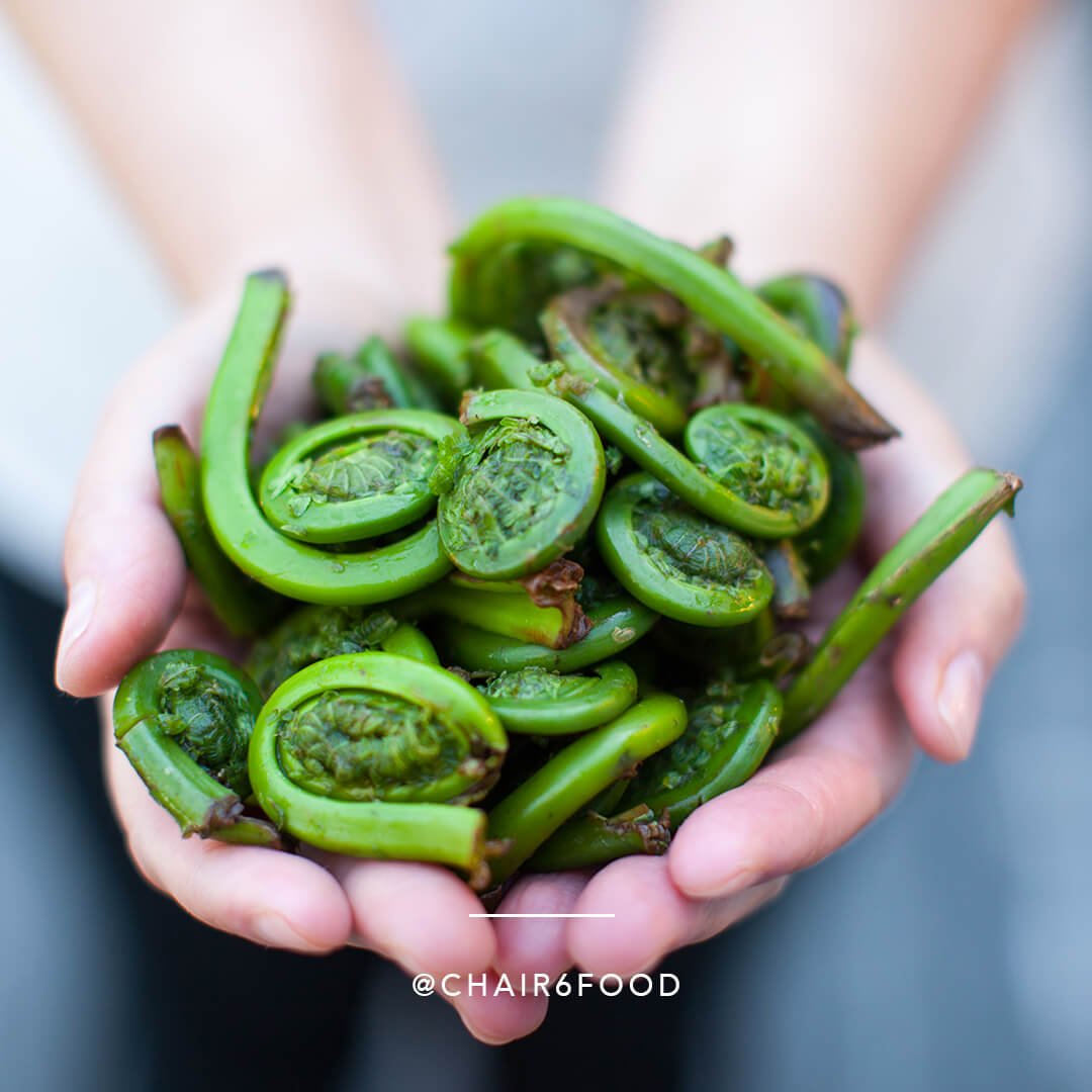Fiddleheads